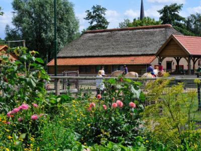 Kinderboerderij in Jeugddorp De Glind